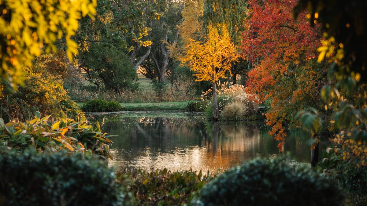 Easter Sunday should see Glenwood Gardens in all its autumn glory.